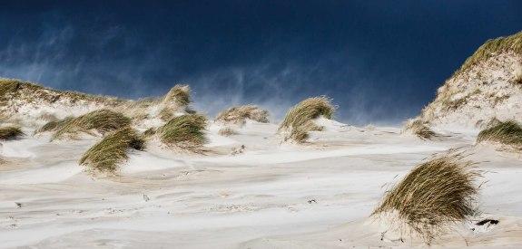 Dünen-im-Wind, © Jan Dettmering