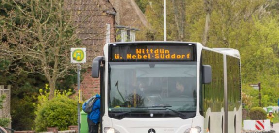 bus amrum