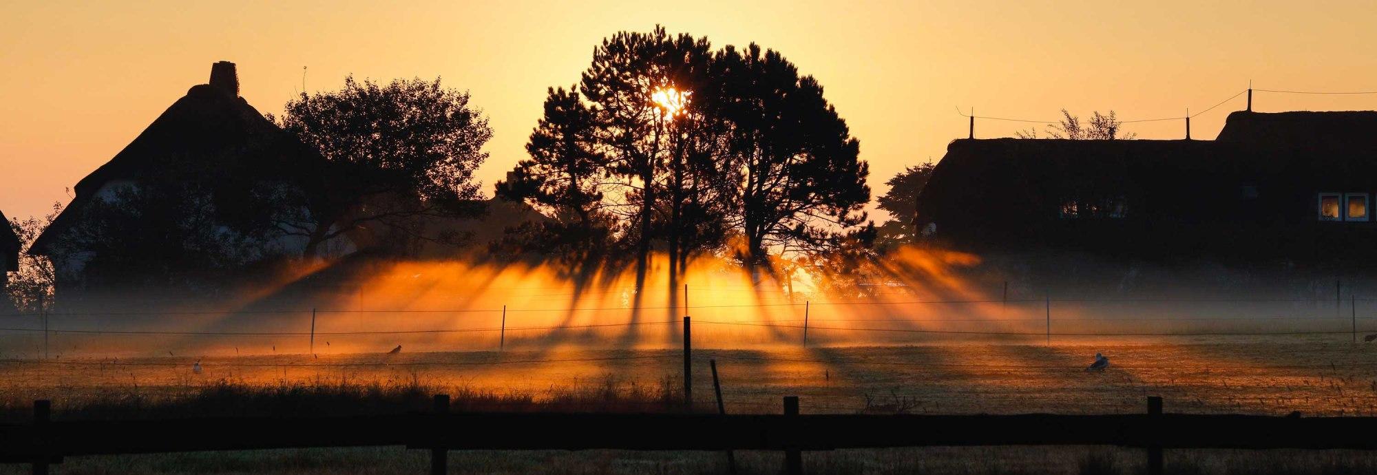 Lichtblicke auf Amrum, © Simone Jansen