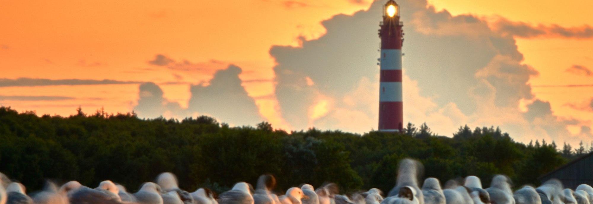 Leuchtturm mit Möwen am Anleger, © Heide Cosmographia
