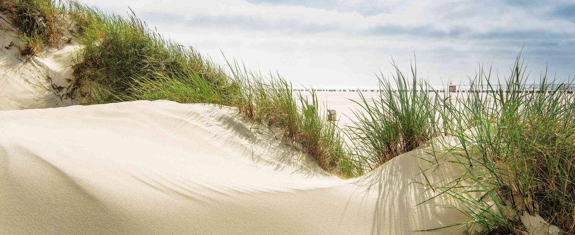 Amrumer Kniepsand mit Strandkörbe und Vordüne, © Oliver Franke