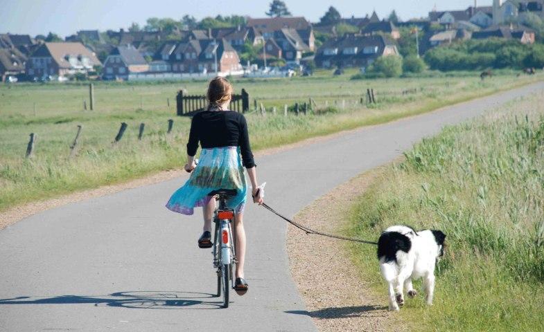 Radfahren Amrum, © KQuedens
